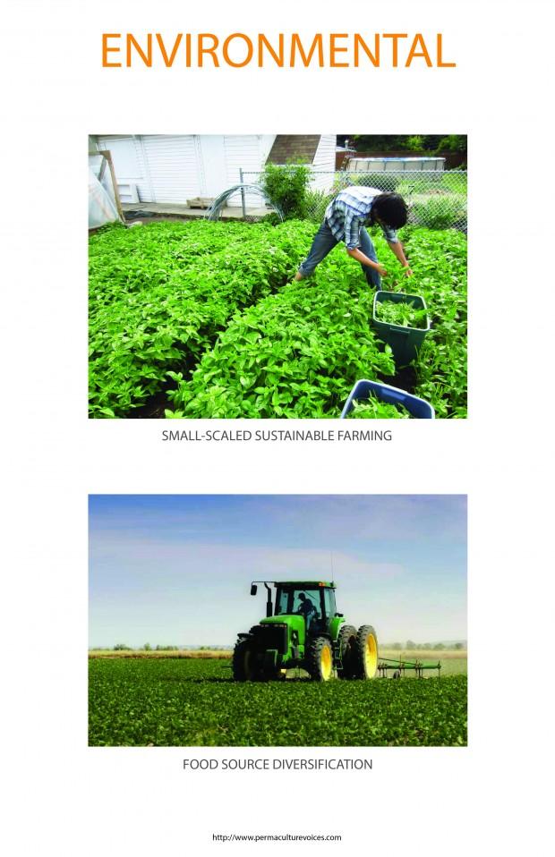 ARCH581 SPIN FARMING Final